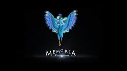 memoria_intro