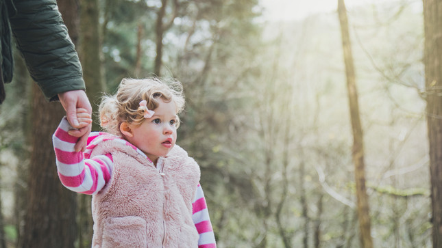 Bluebell Spotting in the Woods   Family Photographer Lancashire