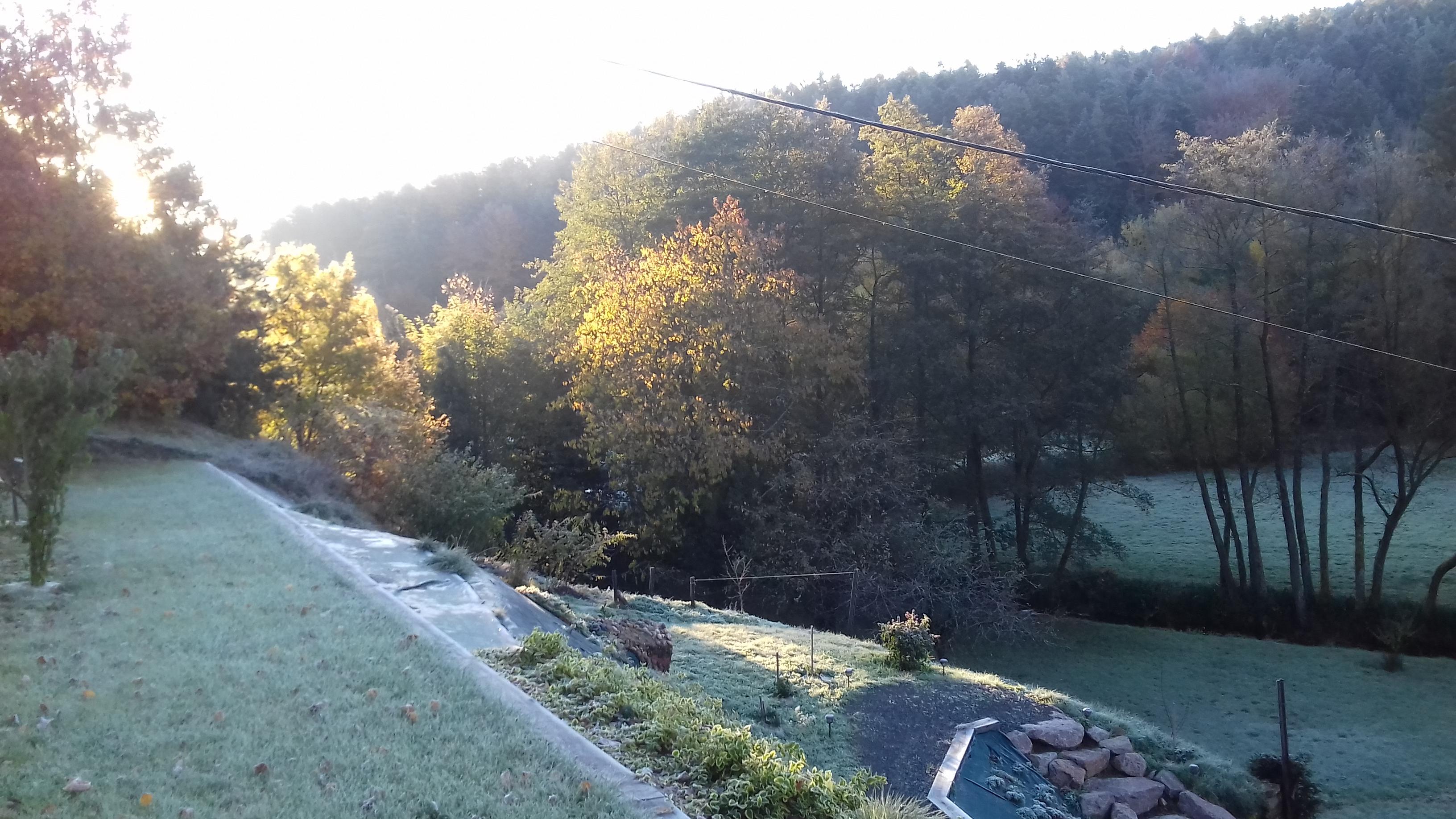 Notre_jardin_rivière_et_forêt