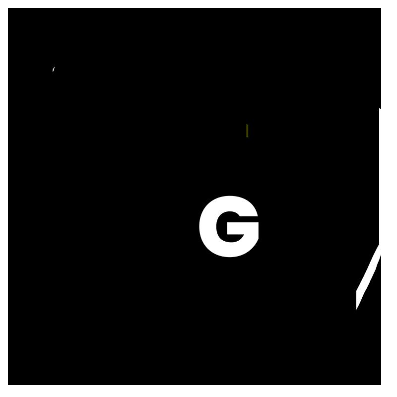G 16x20