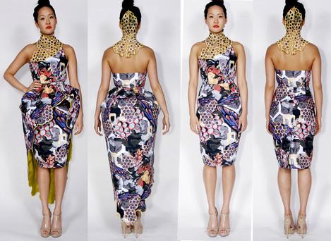 print dress print_o.jpg