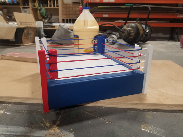 Miniature Boxing Ring for a Muhammad Ali 'FUNKO' Toy shoot, 2019