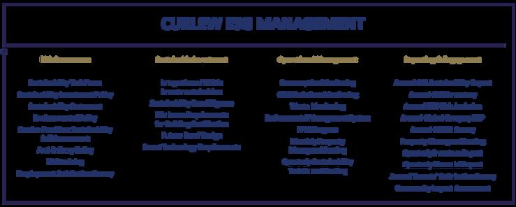 ESG-Management.png