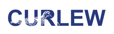 CC_Logo__Dark Cornflower Blue.png