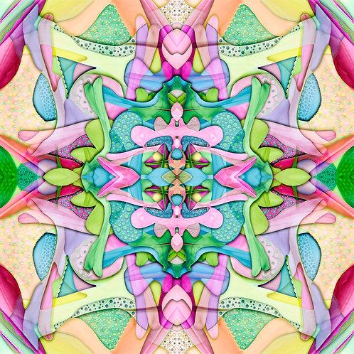CandyLane No.2