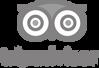 1200px-TripAdvisor_logo.svg copy 2.png