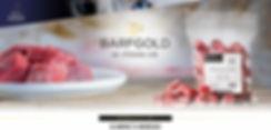 barfgold-home-header.jpg