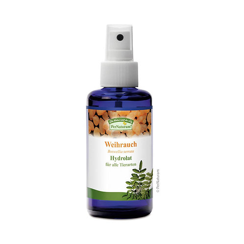 Weihrauch Hydrolat (100 ml)