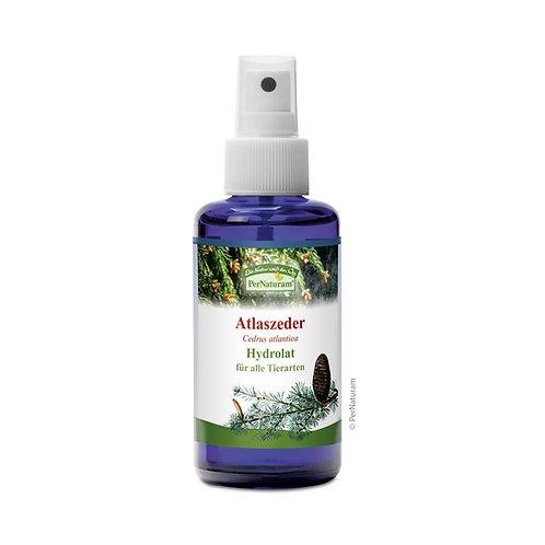 Atlaszeder Hydrolat (100 ml)