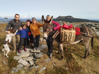 Balade sur le mont Alambre avec Volvo l'âne