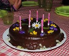 organisation d'anniversaire à la ferme avec animation contes, balades à poney et gateau d'anniversaire