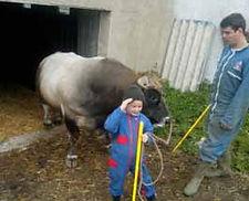 prenez soin des bêtes comme un vrai agriculteur