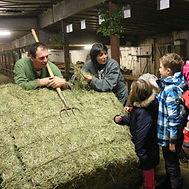 """visite de la ferme """"A la bonne fourche"""", production de fin gras du Mezenc"""