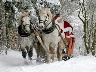 Bientôt Noël A la ferme !