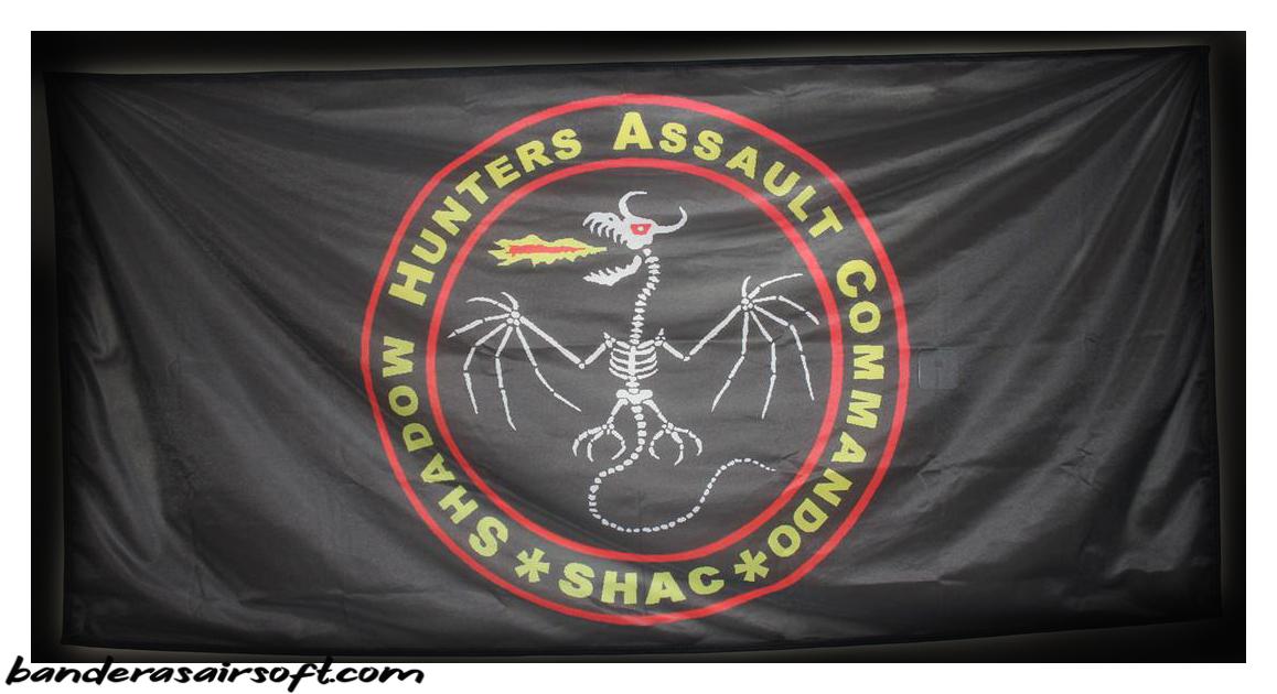 Banderas personalizadas STALKER (2)