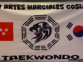 Bandera 2x1 para Club artes marciales Coslada