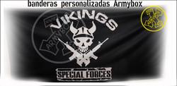 Bandera Vikings
