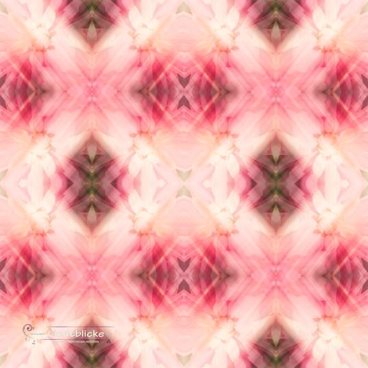 Dahlien-Kaleidoskop