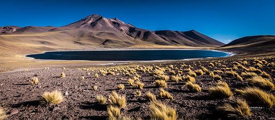 SM_Altiplano_Bolivien_Atacama_2019-153.j