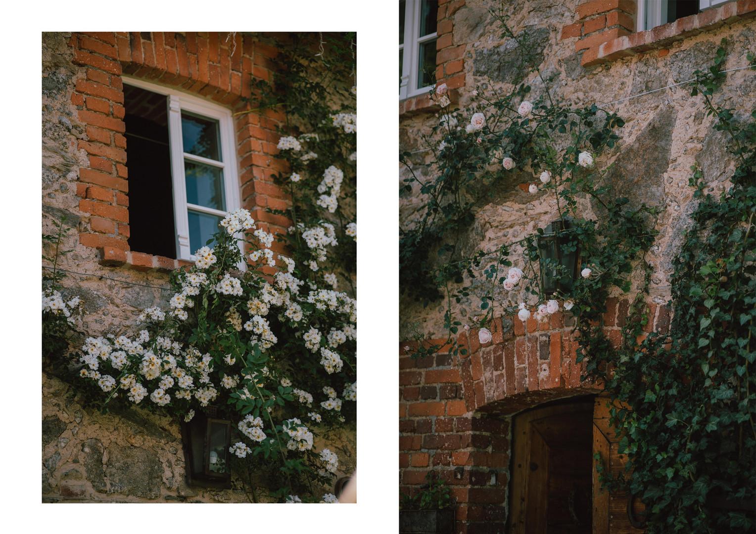 3 róże.jpg