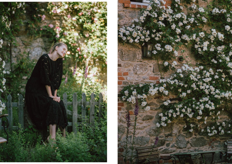13 róże.jpg
