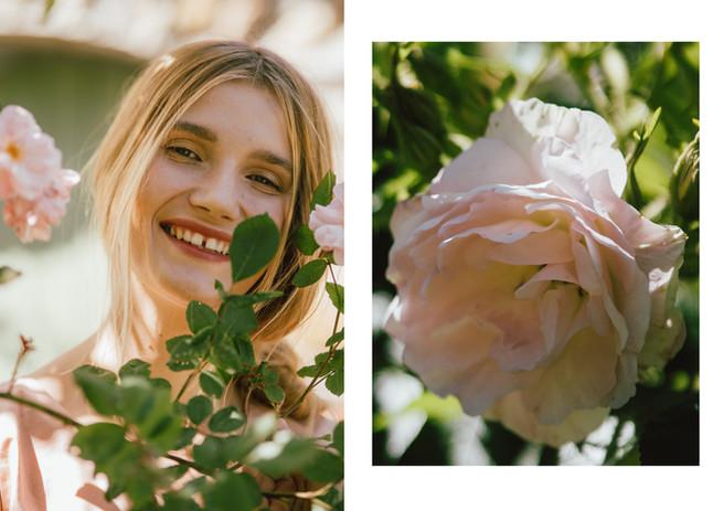 5 róże.jpg