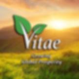 20181220 - Vitae Sunrise.jpg