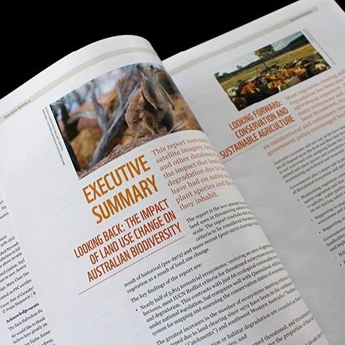 WWF Report