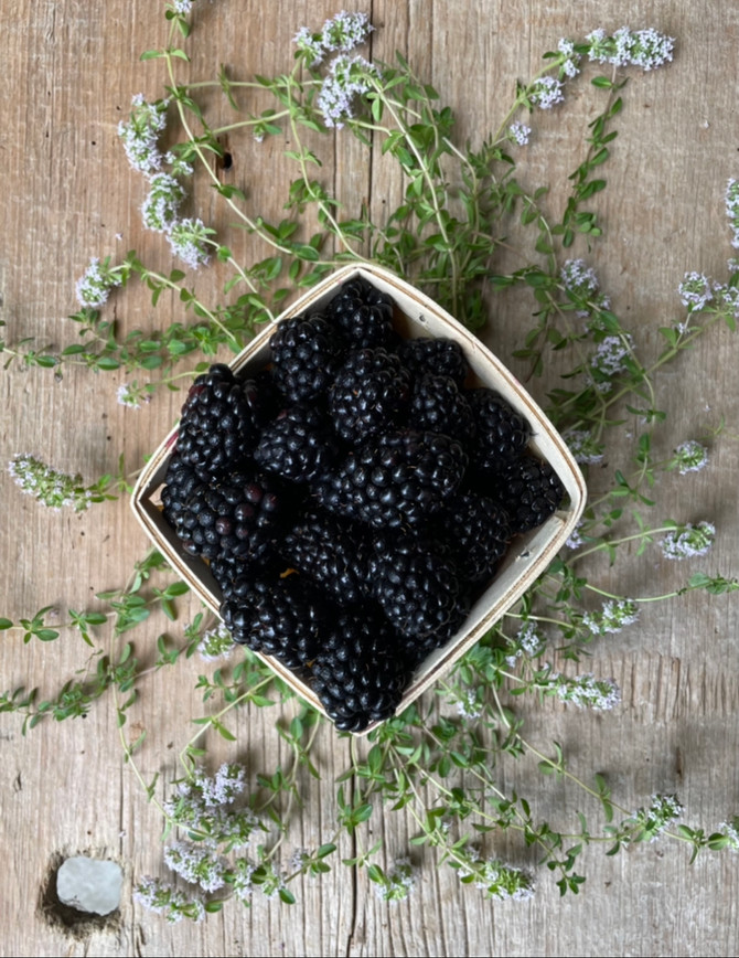 Crop Report: Ohio Blackberries