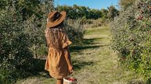 Crop Report: Crisp Apples & Autumn Days