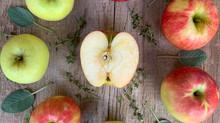 Crop Report: Honeycrisp Apples