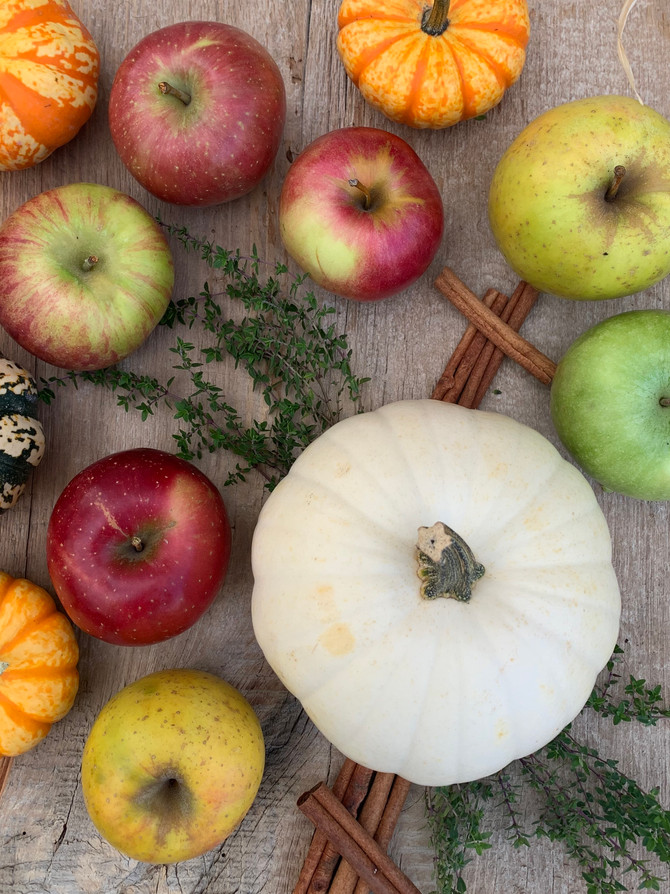Crop Report: Goldrush Apple Cider & Thanksgiving Favorites