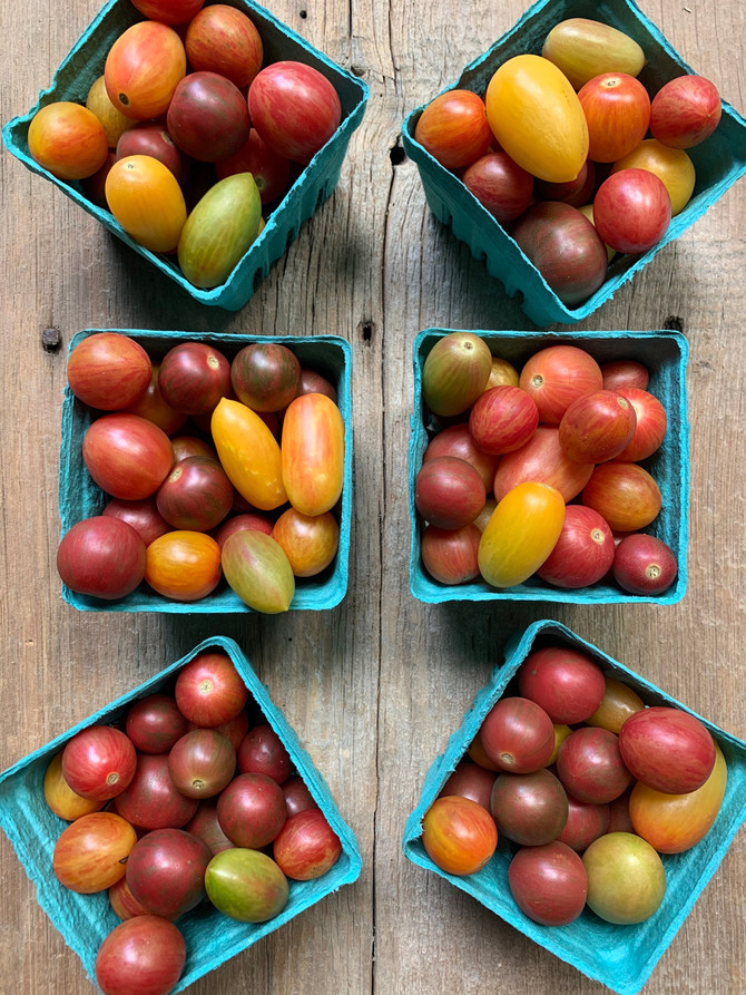 Crop Report: Ohio Grown Heirloom Tomatoes