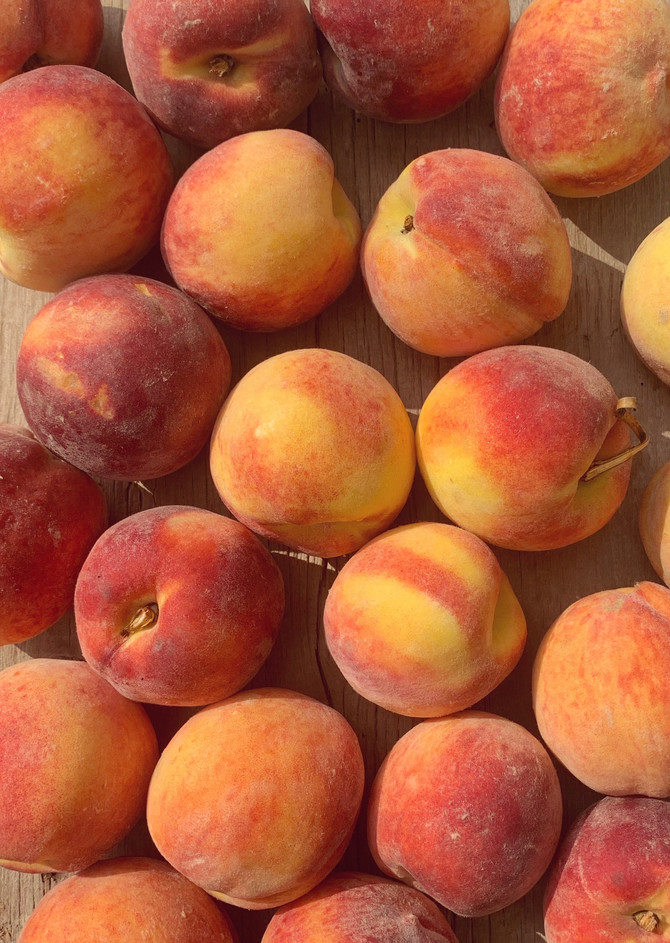 Crop Report: Red Haven Peaches