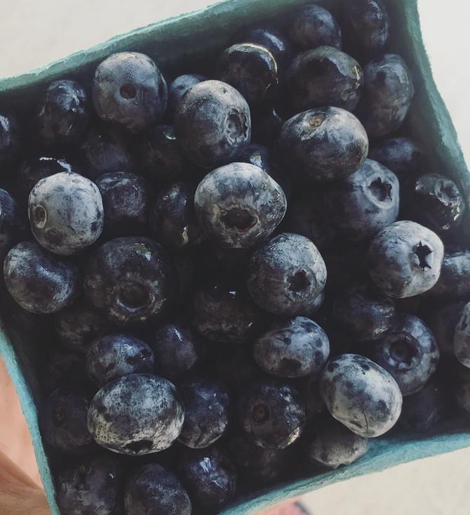 Crop Report: Back to School Snacks