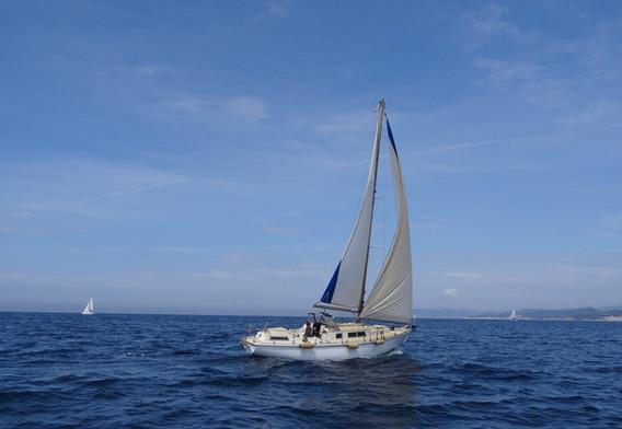 Gricha sous voiles vue tribord