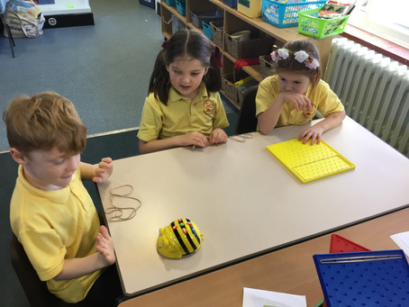 Computing with Beebots!