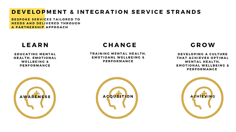 D&I Service Overview Image.png