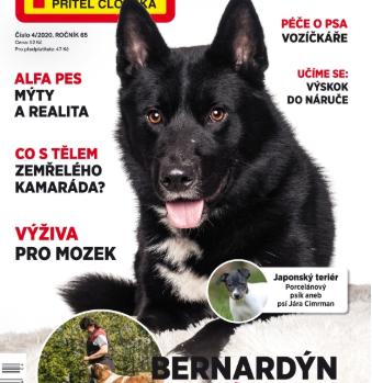 Článek o Bruncvíkovi v časopisu Pes přítel člověka 04/2020
