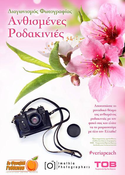 PHOTO POSTER A3.jpg