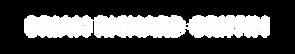 BRG Logo copy.png