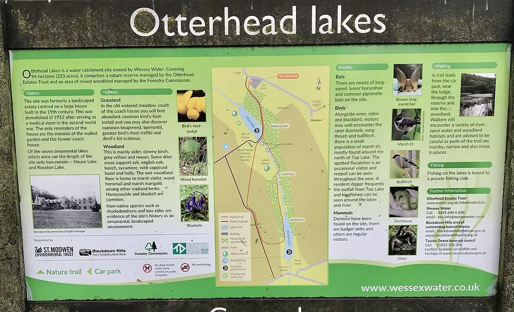 Otterhead Lakes child friendly walk Blackdown Hills