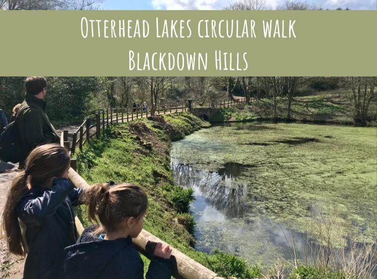 Otterhead Lakes family circular walk in the Blackdown Hills