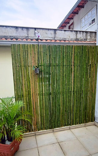 cerda de bambu jardim