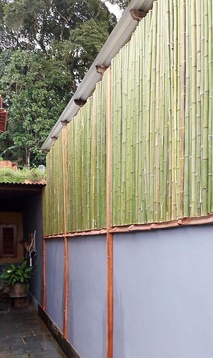 cerca de bambu muro
