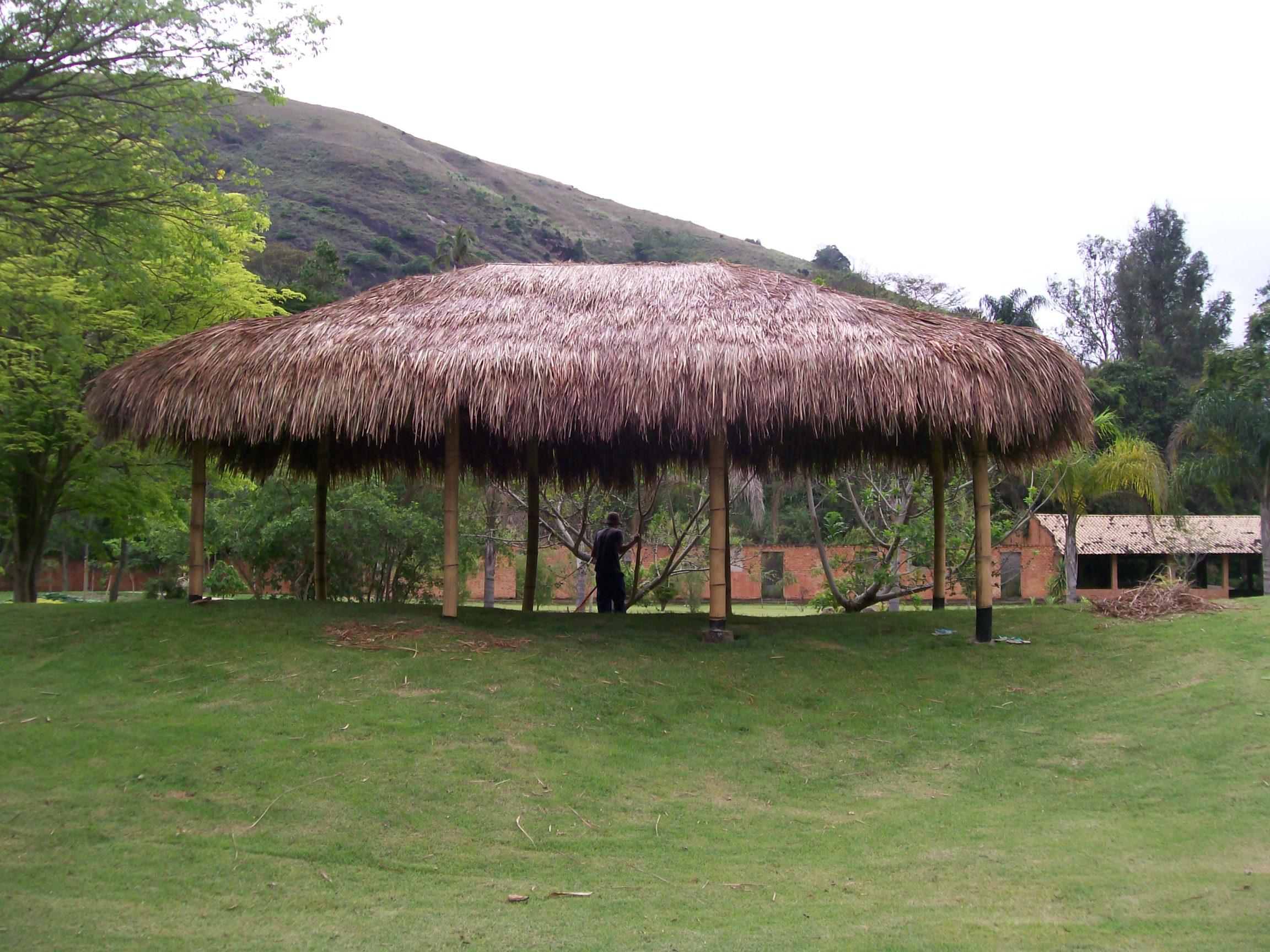 bambu e sape