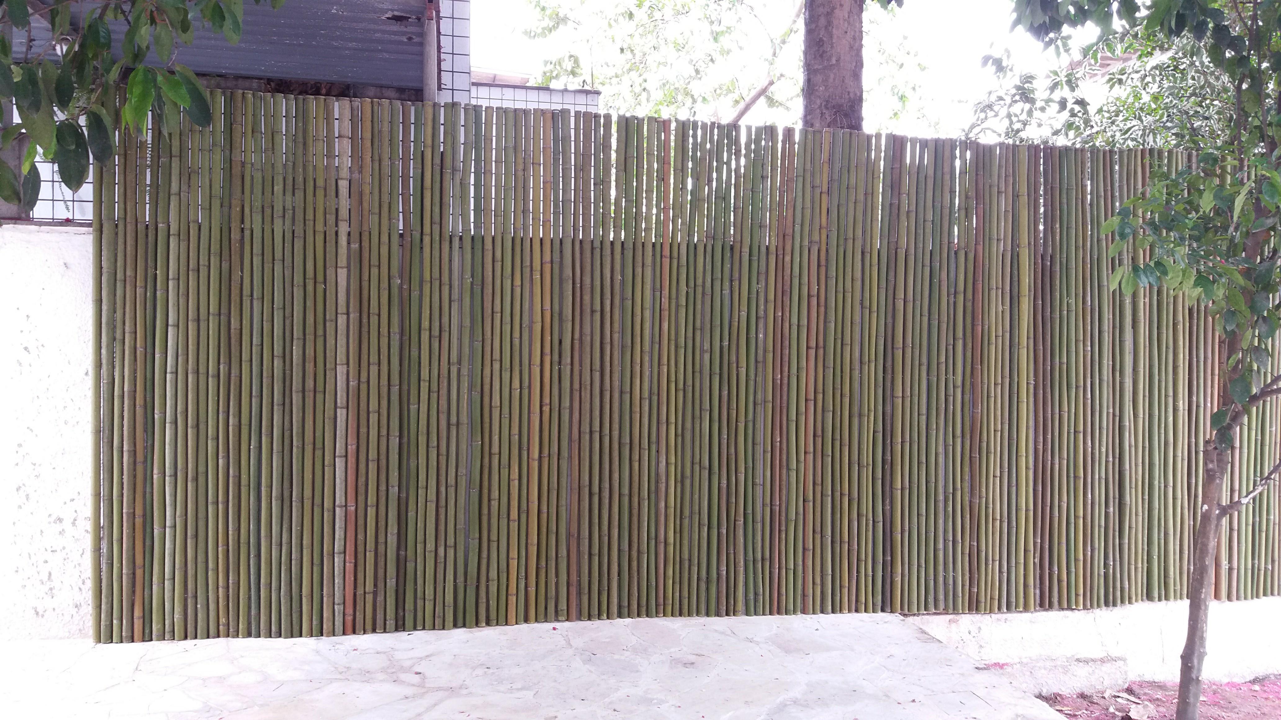 painel de bambu pronto