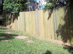 cerca de bambu tratado natural