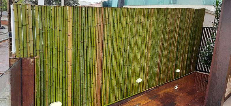 cerca de bambu preço