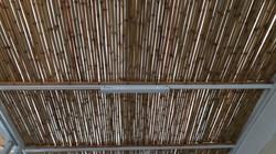 forro de bambu tratado